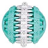 Trixie 32941 Denta Fun Ball, Mintfresh, Naturgummi, ø 6 cm