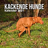 Kackende Hunde Kalender 2021: Lustige Geschenke für Freunde, Hundebesitzer, Weihnachten, Neujahr, Hundeliebhaber