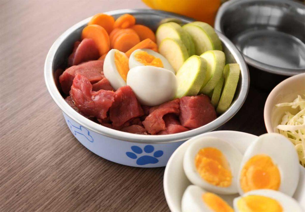 Gesundes Hundefutter mit Eiern und Gemüse. Karotte.