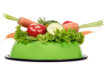 Dürfen Hunde Gurke fressen? Fressnapf mit Gemüse drin.