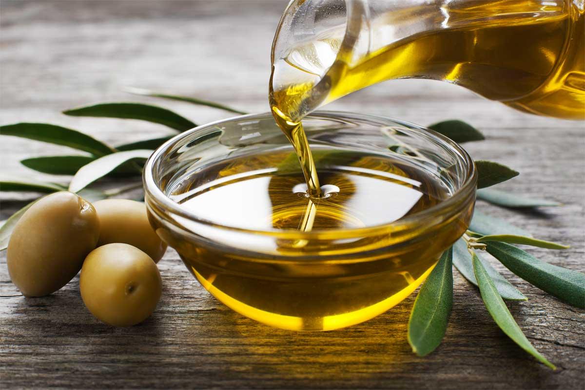 Olivenöl für Hunde – 8 Geheimnisse