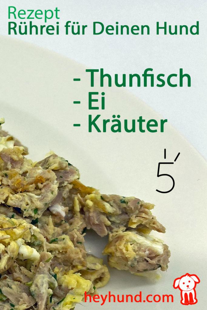 Rezept Thunfisch, Ei und Kräuter ergibt leckeres Rührei für deinen Hund!